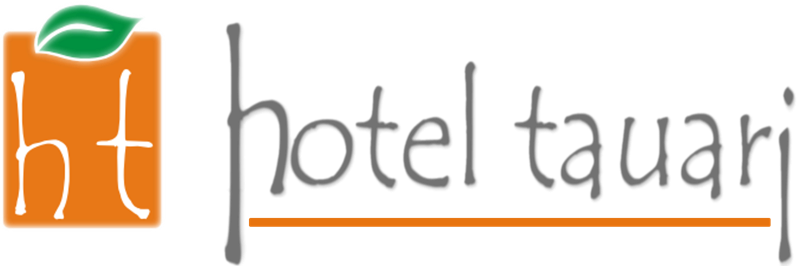 Nation Hotel logo